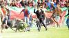 """الفيفا يطلب من المغرب تقريرا عن أسباب أحداث ملعب """"الفتح"""""""