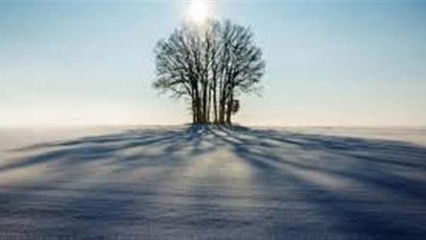 من هم الذين يظلهم الله في ظله يوم القيامة
